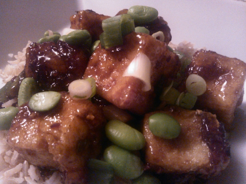 Tofu in Sweet Soy Sauce with Edamame